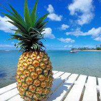 Как работает ананас?