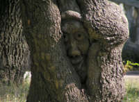 Почему мы стучим по дереву