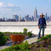 Как необычно использовать крыши? (часть 2)