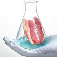 Как создают синтетическое мясо?